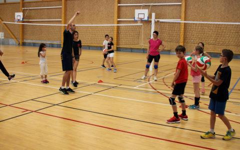 Nouveauté : la Section Jeunes Volley
