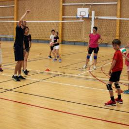 Nos équipes Jeunes participent au championnat FFVB départemental